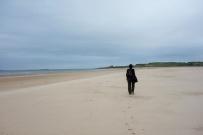 Coast Path (2)