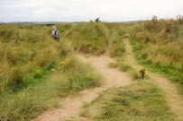 Coast Path (3)