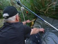 Oups! Nicht abhauen! Ein Fisch wäre aber in der Lage, sich von hier wieder ins Wasser zurückzuschnellen.