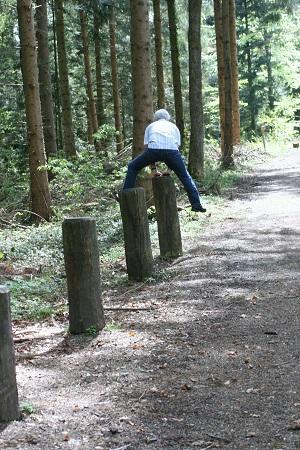 Torkenweiler-Wald (3)