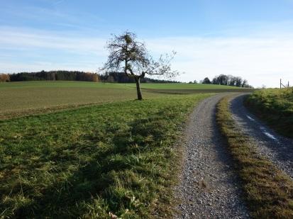 franzsiskusweg-14