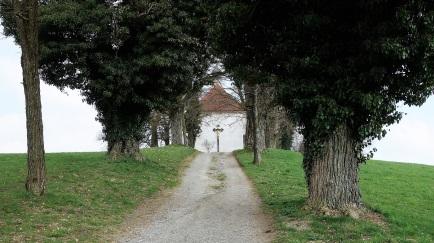 Eine kleine Allee führt zur Loretokapelle, normalerweise mit einer spektakulären Aussicht bis zu den Alpen. Heute aber nicht, es war zu diesig. Egal. Mehr zur Kapelle: http://www.wolfegg.de/de/tourismus-freizeit/sehenswertes/loretokapelle/