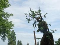 Ein Waldgeist auf Wanderschaft.