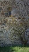 Lichtblick hinter einer kleinen Kirche in Frenkenbach.