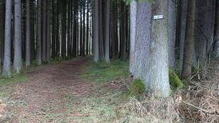 20191221 Königsfeld-Peterszell (25)